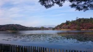 南湖 紅葉
